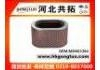 Air Filter:MD603384
